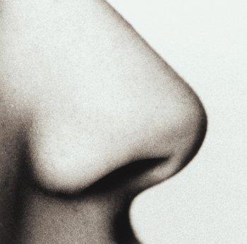 sense-of-smell